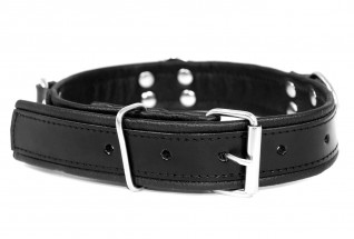 Slave4master Basic Leather Collar